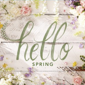 Pier 1 Imports Hello Spring